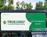 Hà Lan: Nông dân 4.0 'trỗi dậy' để được... lắng nghe